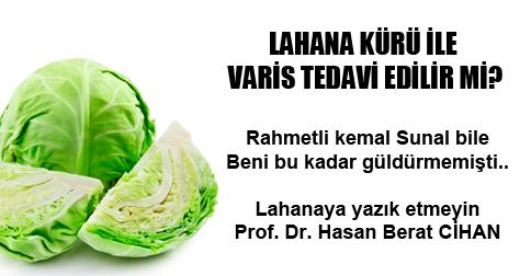 Varis Lahana Kürü